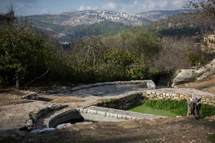 סיור בליפתא: בתים עתיקים, מעיינות והמון ירוק • גלריה
