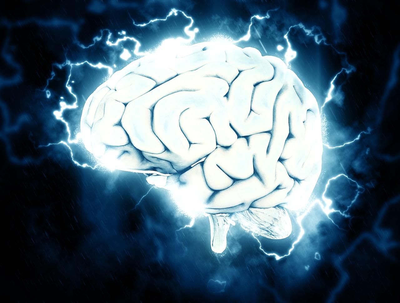 """""""עברת אירוע מוחי קל"""" אמר המתמחה לחולה שנותרה עם שיתוק קשה"""