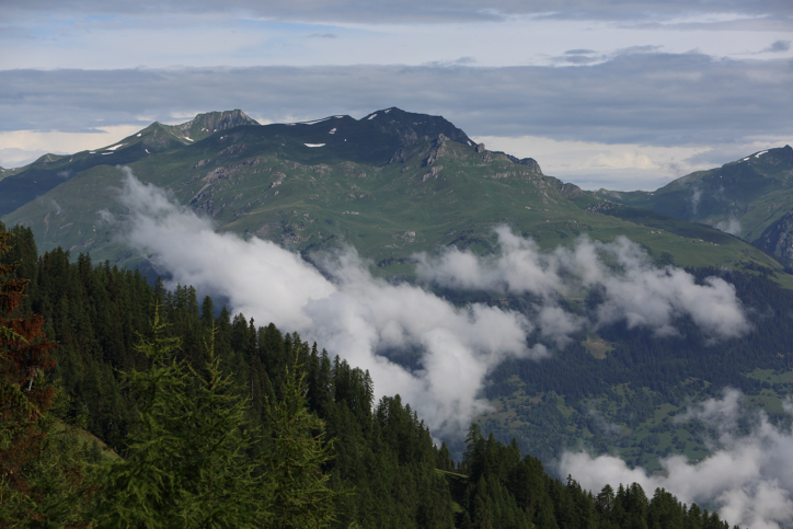 המסע לאלפים: נופים ירוקים עוצרי נשימה