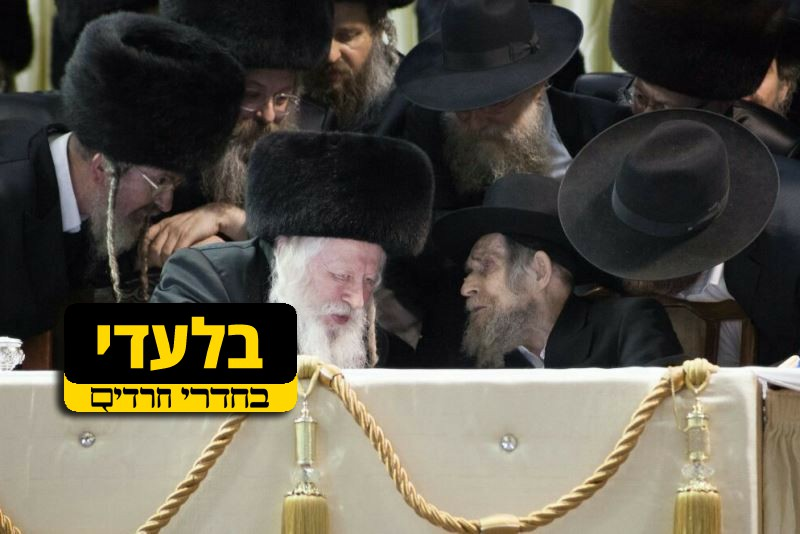 Historic peace in the Haredi world