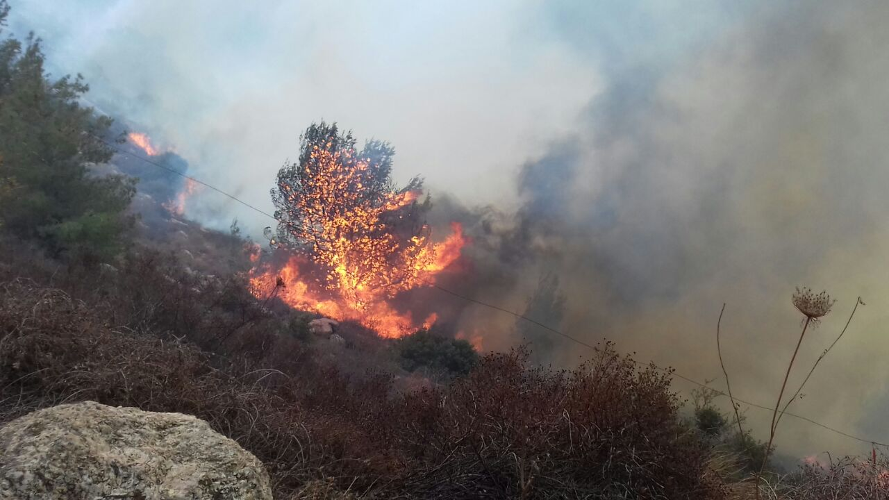 Wildfire Forces Nataf Residents To Evacuate Homes