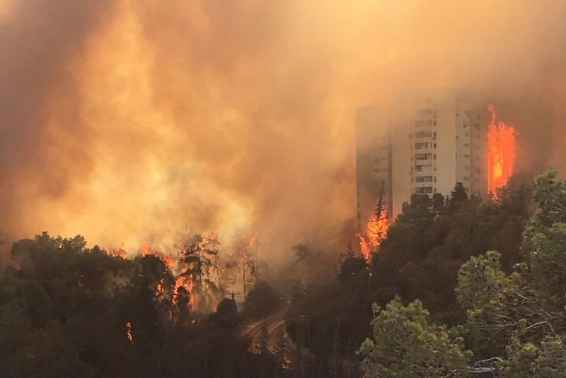 המדינה לחברות הביטוח: אל תעכבו תשלום לנפגעי השריפה