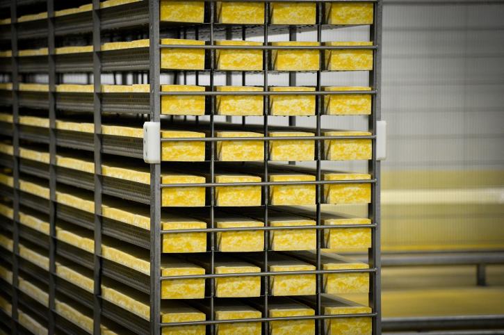 לכבוד מתן תורה: אלפי אברכים במיר קיבלו גבינה צהובה בחינם