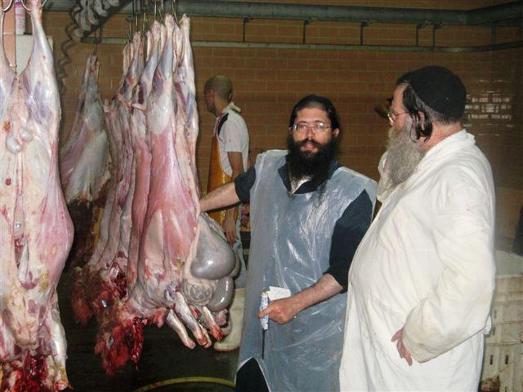 הרב יברוב: עדיין אין לאכול עופות
