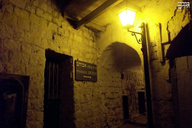צפת: על קדושה יהודית, טבע ותיירות