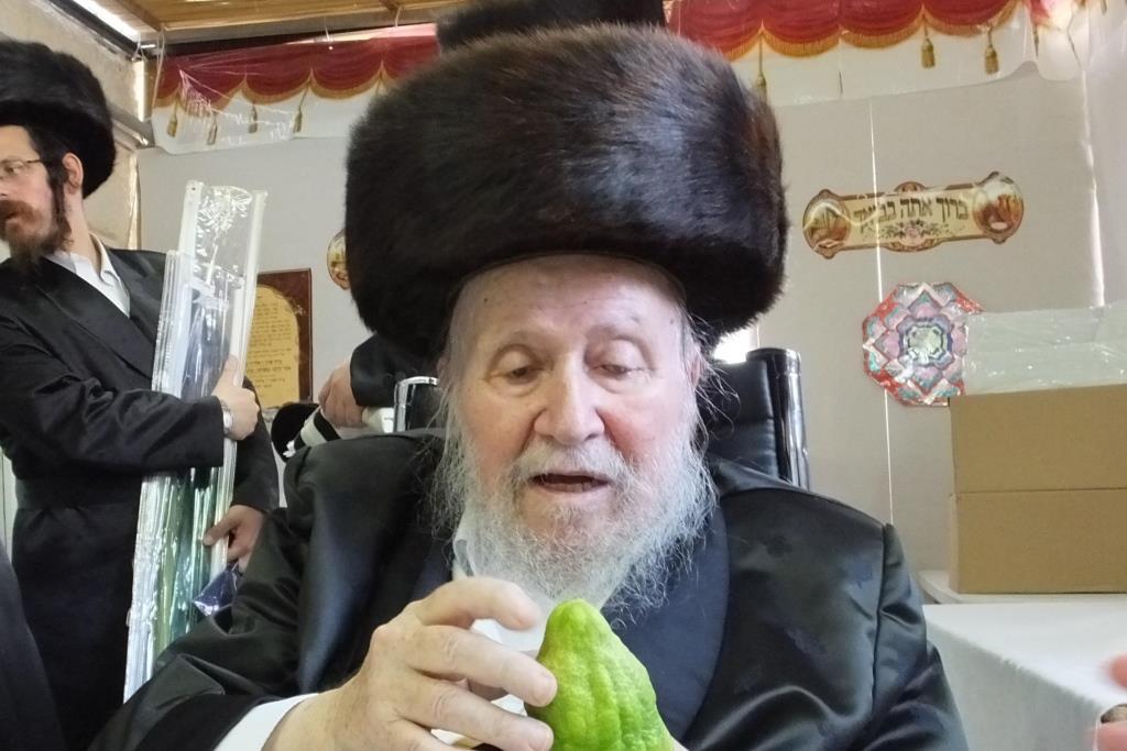 "BDH: Gavad Zurich Hagaon R' Moishe Chaim Shmerler ZT""L Passes Away"