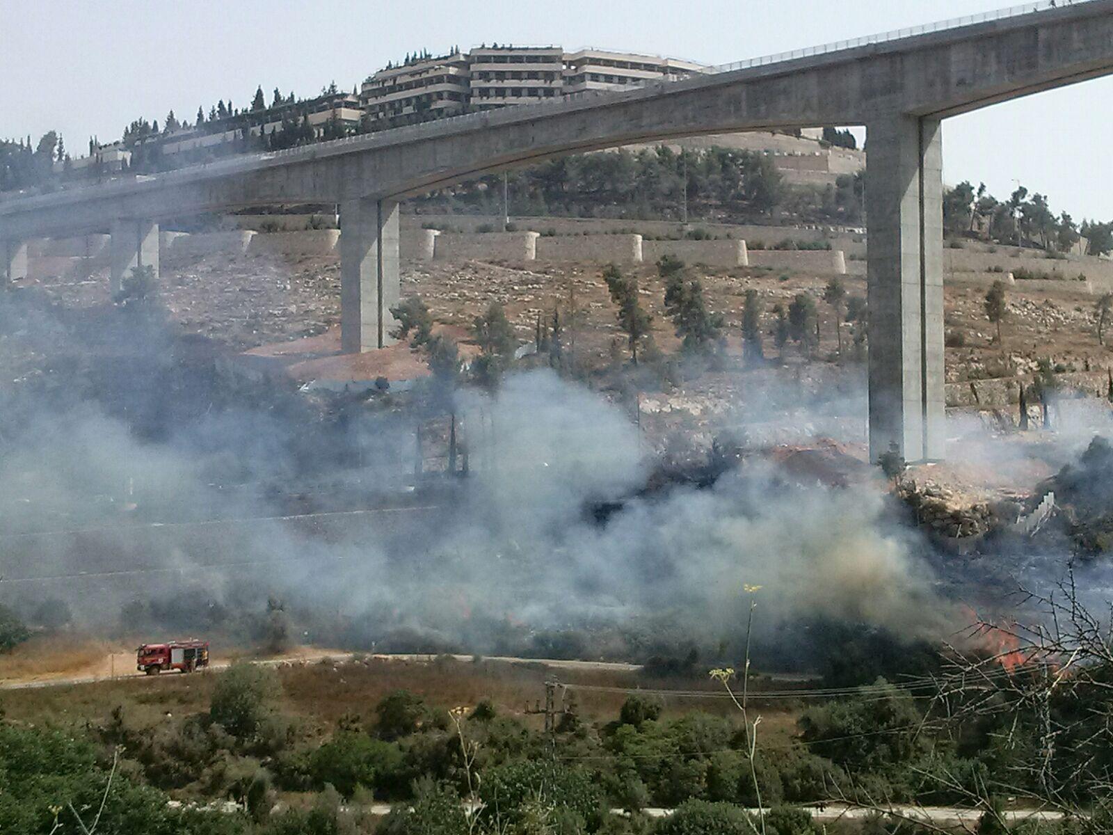 שריפה בעמק הארזים; מטוסי הכיבוי הוזעקו