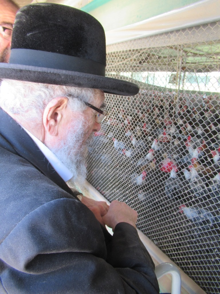הרב לנדא ביקר בלולי ה