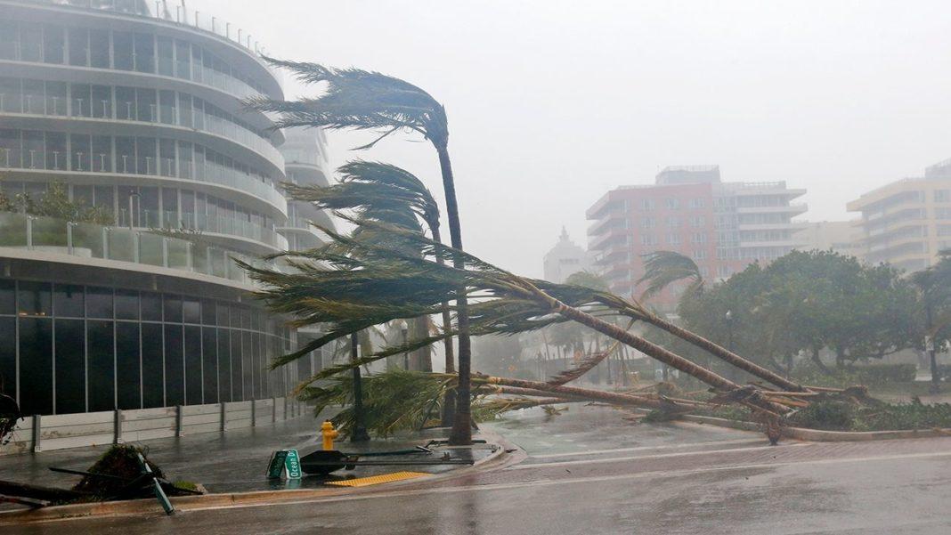 הוריקן