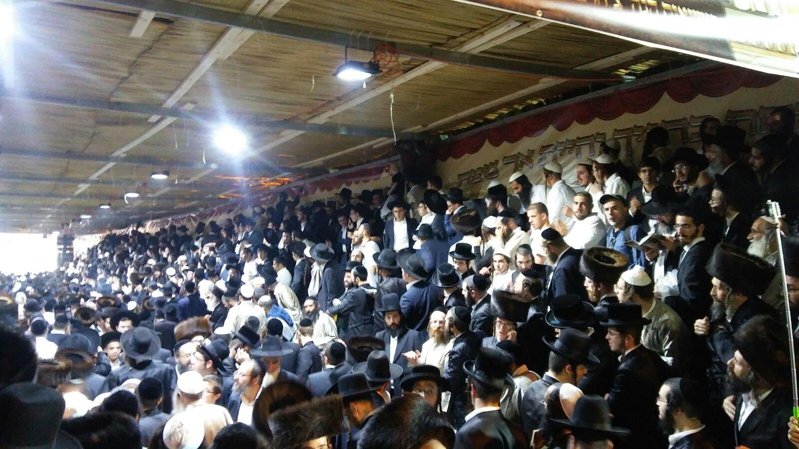 צפו: אלפים חוגגים אצל הרב אליעזר ברלנד