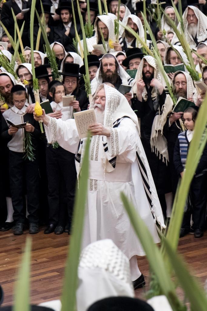 גלריה סיכום מניו יורק: סוכות בחצר הקודש באבוב