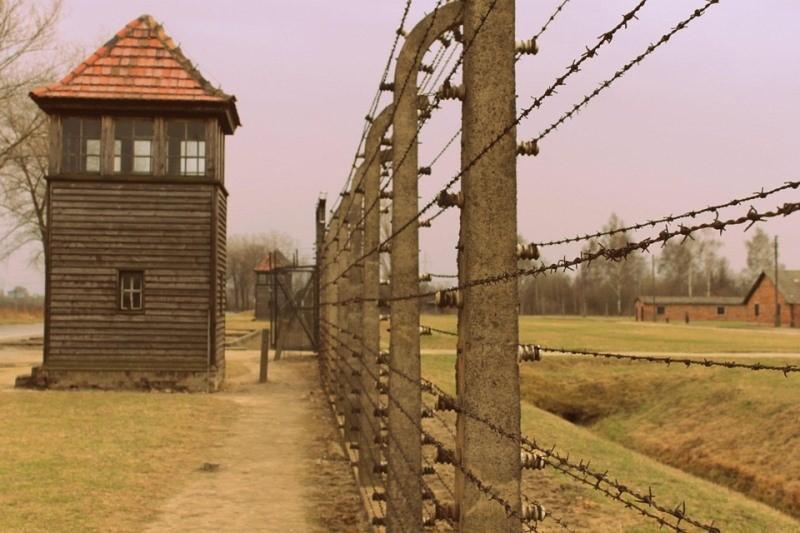 """הגרמנים מרגיעים את הפולנים: """"השואה נעשתה רק על ידינו"""""""
