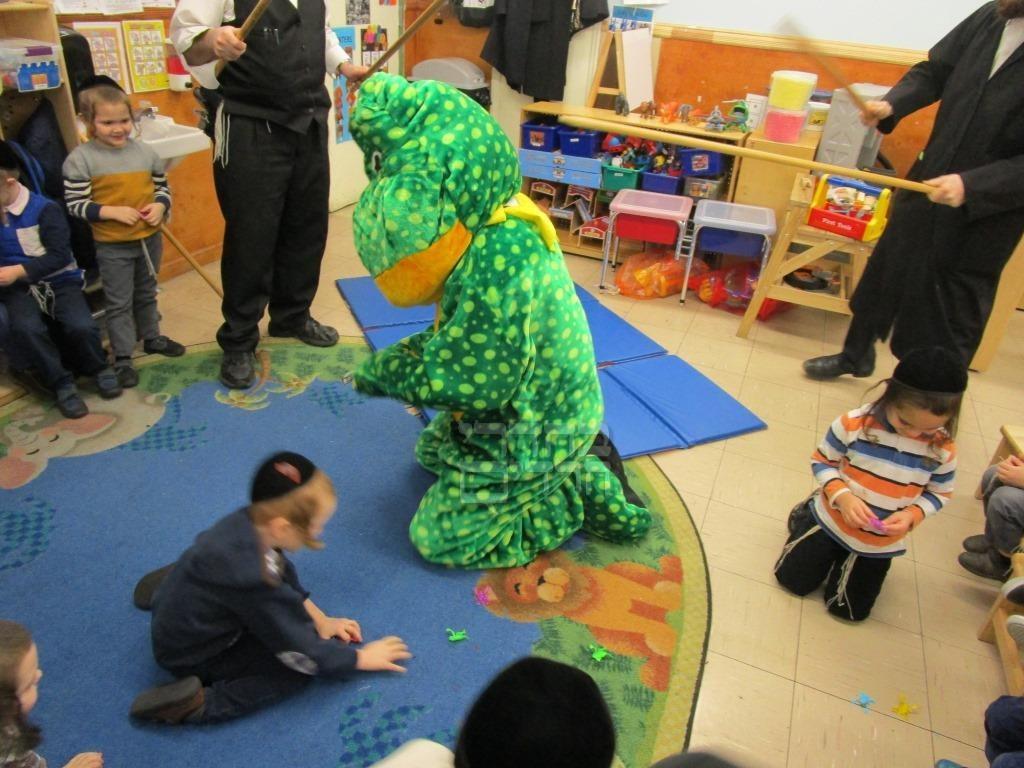 כך הדגימו לילדים החסידים את מכת צפרדעים