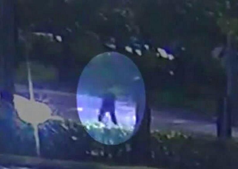 """נס גדול: היורה האכזר נעצר מול בית חב""""ד"""