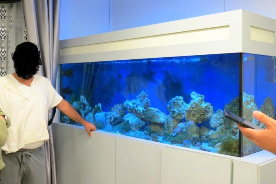 תושב ביתר אסף אלמוגים לאקווריום - ונקנס