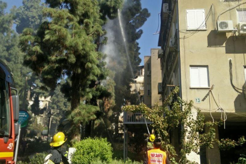 ערב פורים: העץ בבני ברק עלה בלהבות | צפו