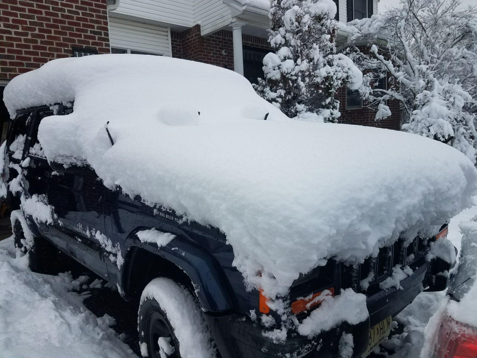 תיעוד מקפיא: יממה של שלג כבד בלייקווד