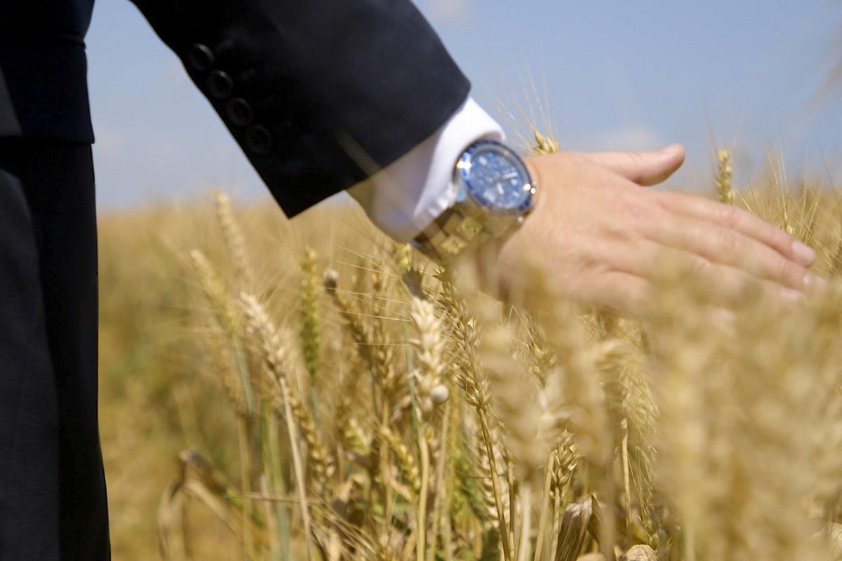חמשת הדברים שאתם צריכים לדעת על... קרקעות חקלאיות
