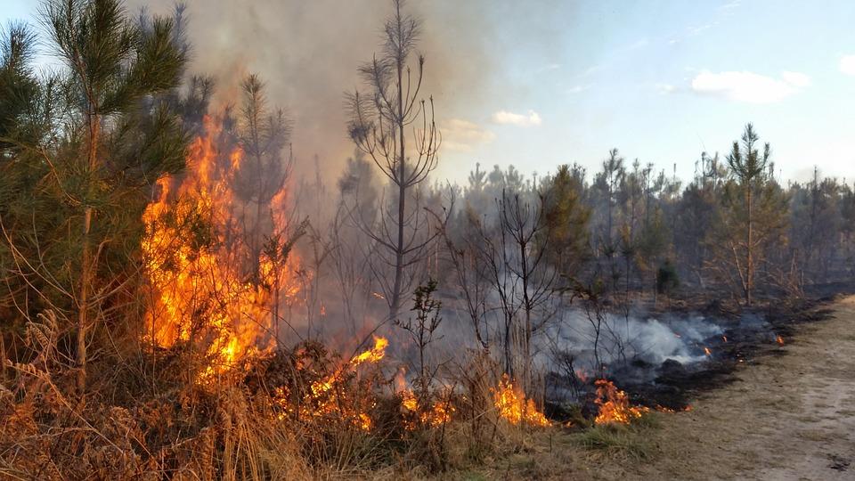 שתי שריפות שהשתוללו בעיר החרדית כובו