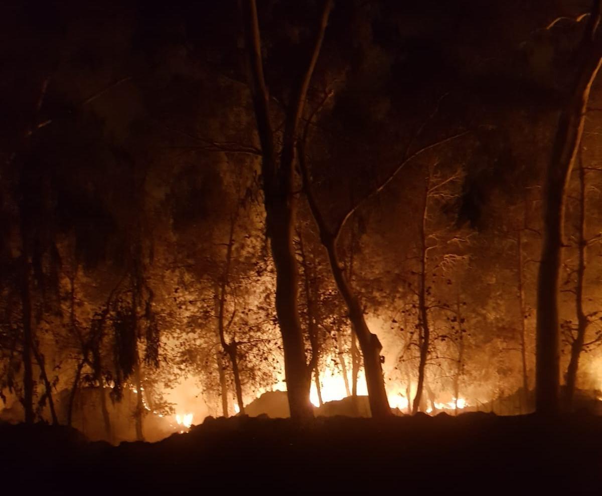 טרור העפיפונים: שריפת ענק באזור שער הנגב