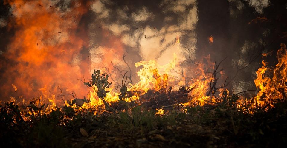 טרור העפיפונים: 50 כבאים נאבקים בלהבות