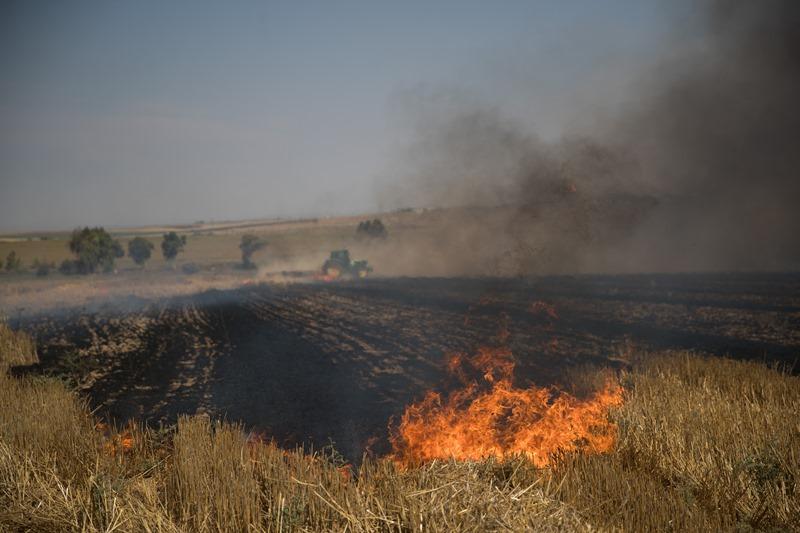 כ-150 אלף דונם נשרפו: נזקי גל העפיפונים
