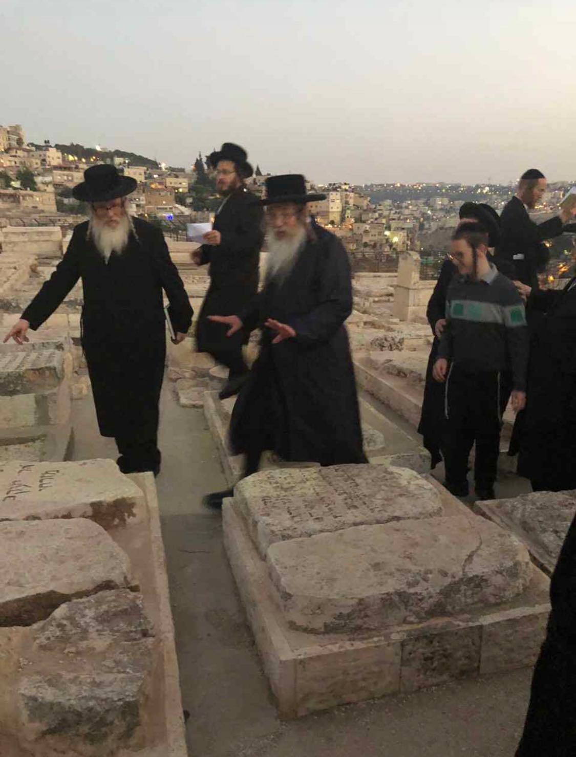 תיעוד: הרבי מקנדה הגיע לביקור ראשון בישראל