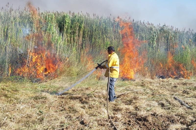 טרור העפיפונים: לוחמי האש נאלצו להדליק שריפות בנגב