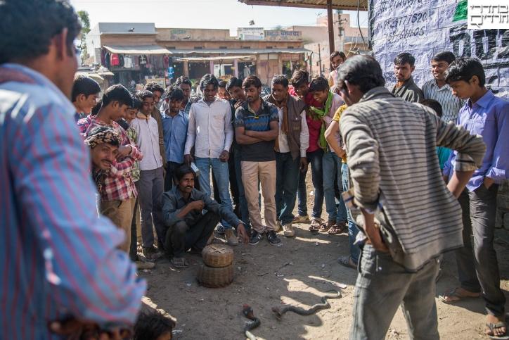 צפו: תעסוקת הפנאי של תושבי הודו