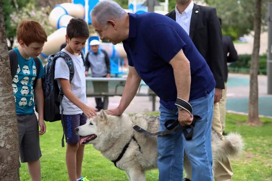 תחת אבטחה כבדה: ביבי טייל עם הכלבה