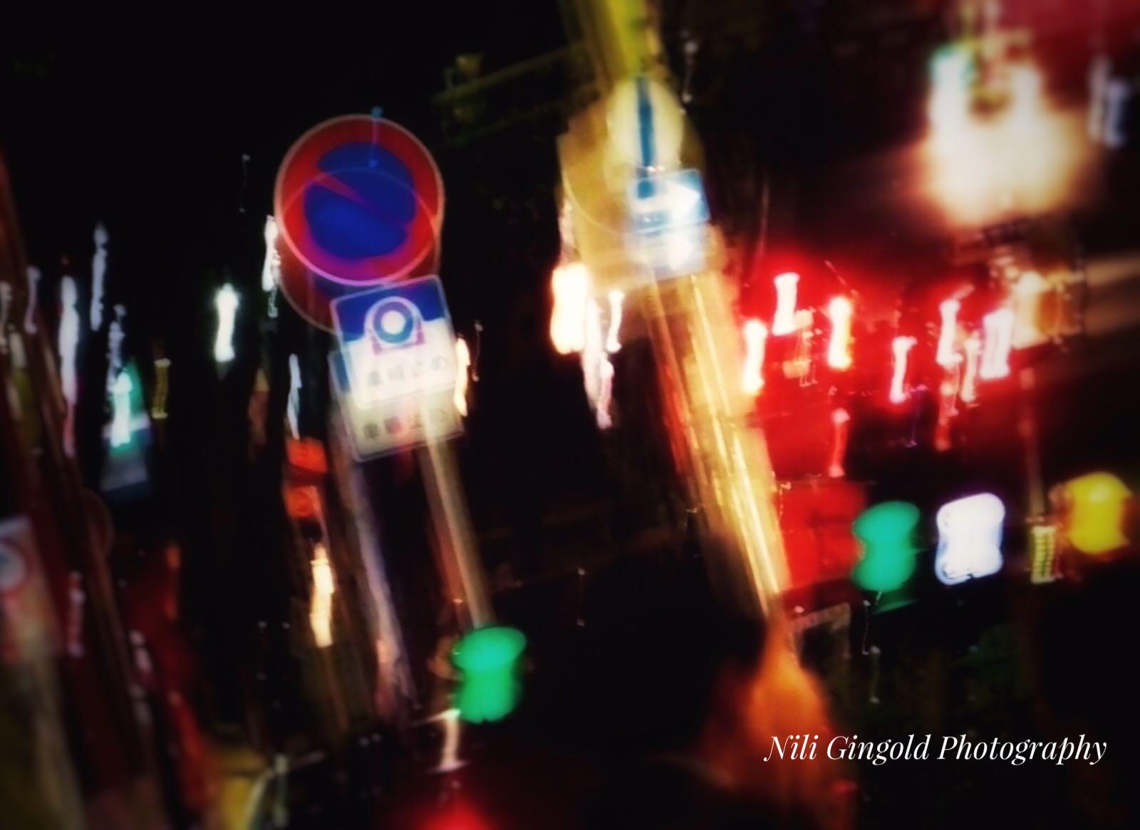 שיר על התמונה עם המשוררת נילי גינגולד-אלשיך