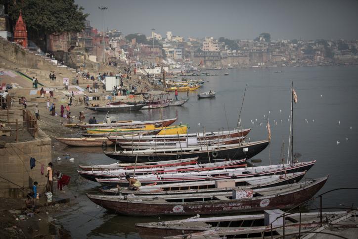 חיי היומיום של הואראנסים בהודו • צפו