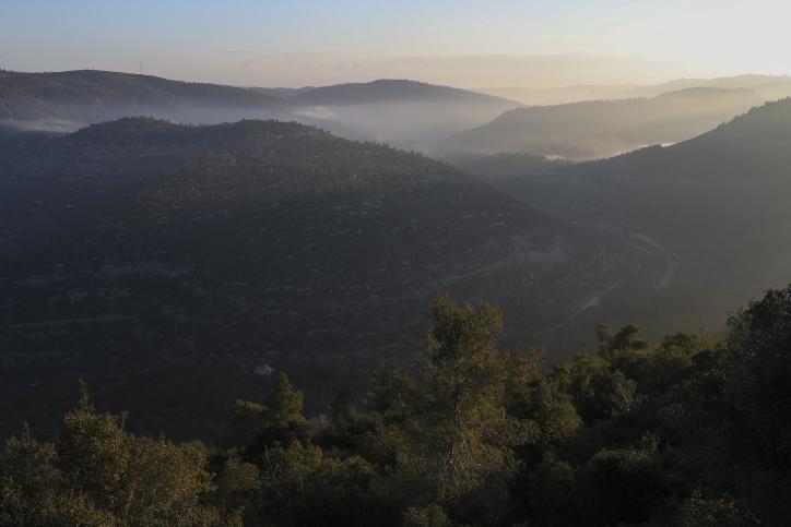 צפו: טיול של חורף בנופי עין כרם בירושלים