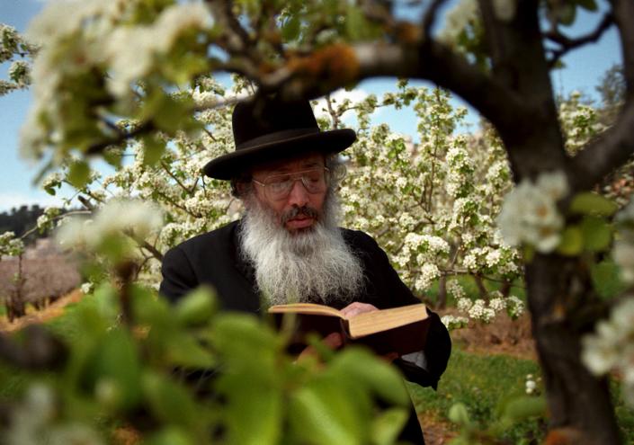 ראש חודש ניסן: היופי של האביב ברכת האילנות